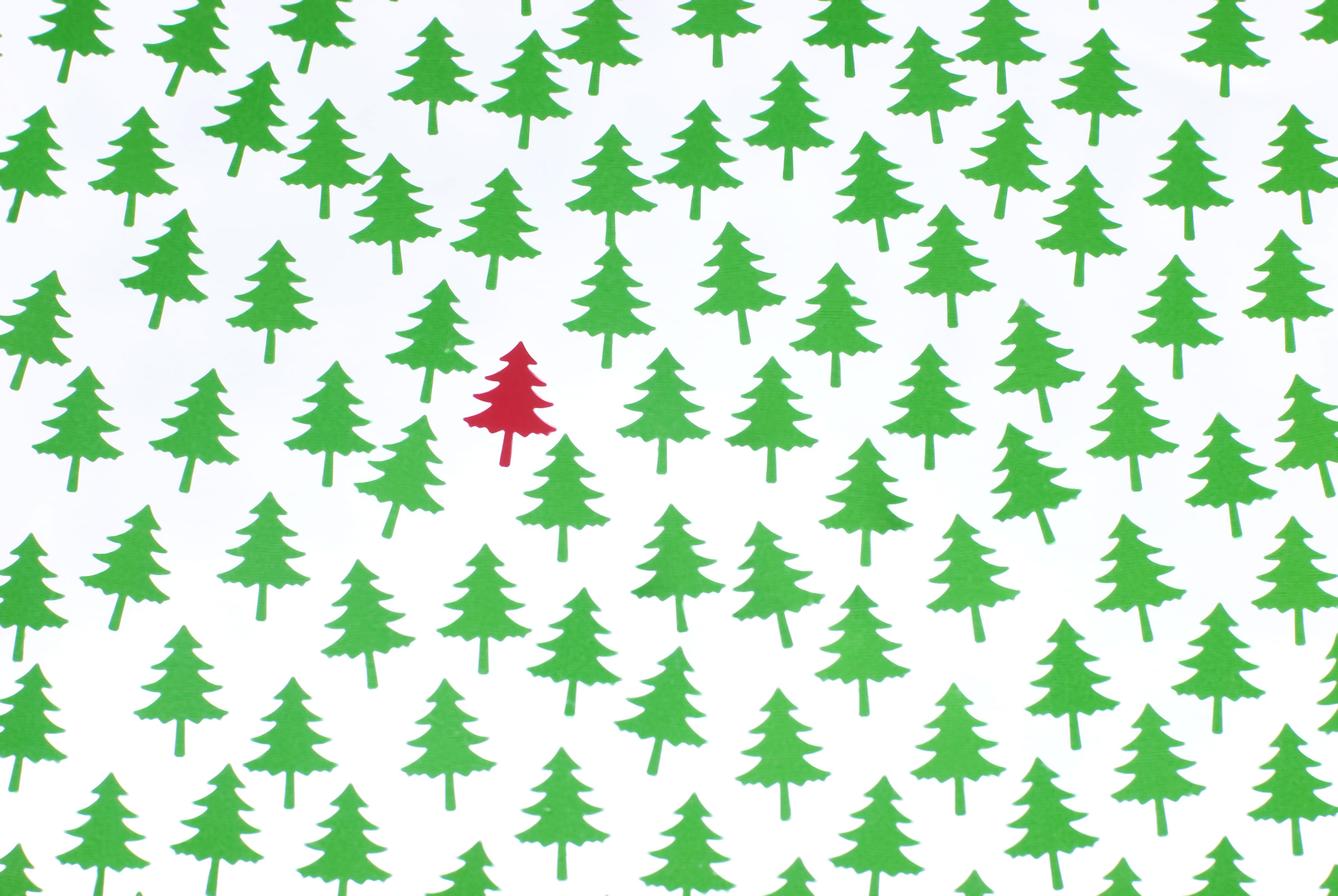 a background of green pine tree shapes with a single red tree standing out