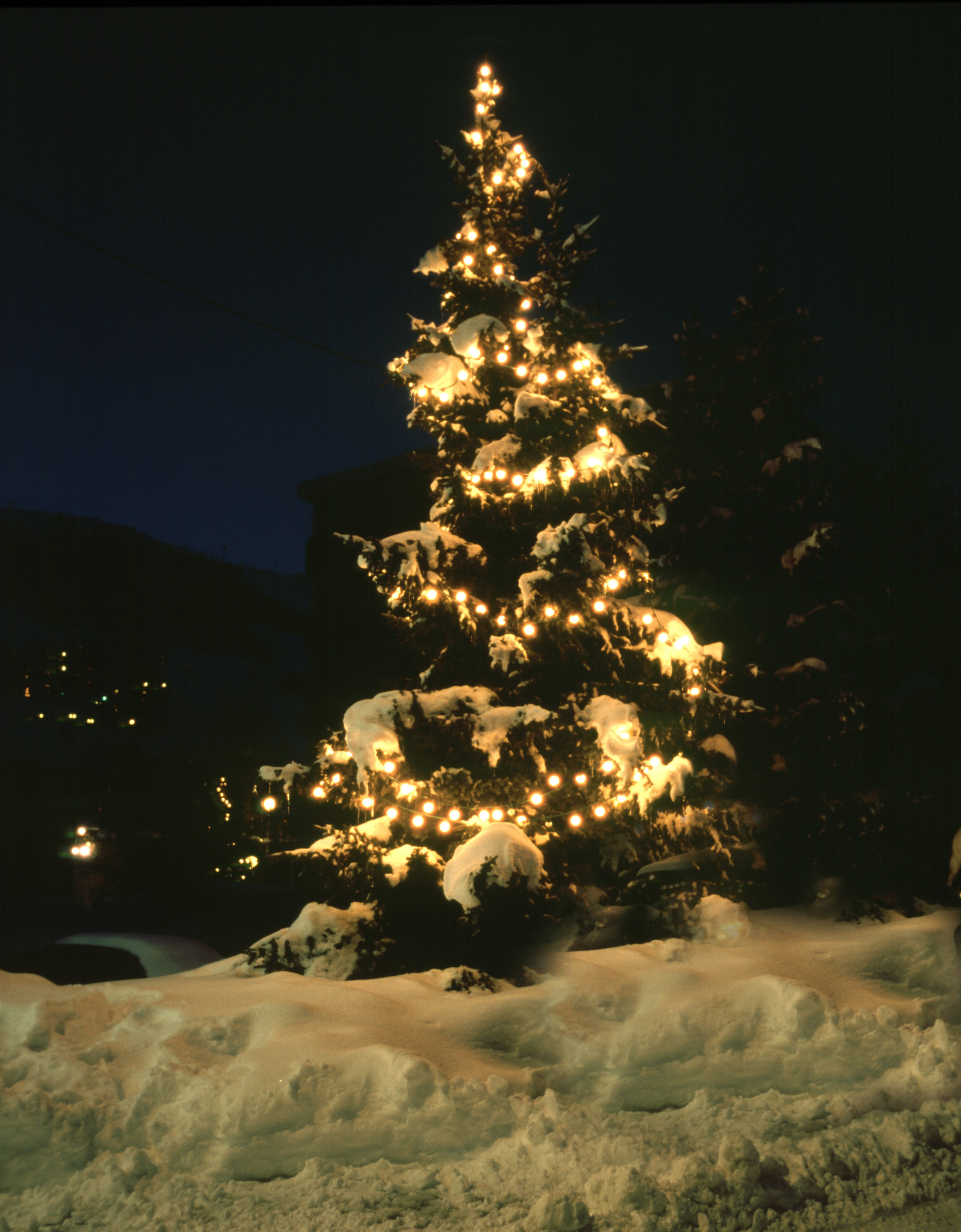 a fir tree covered in snow and decorated with white christmas light
