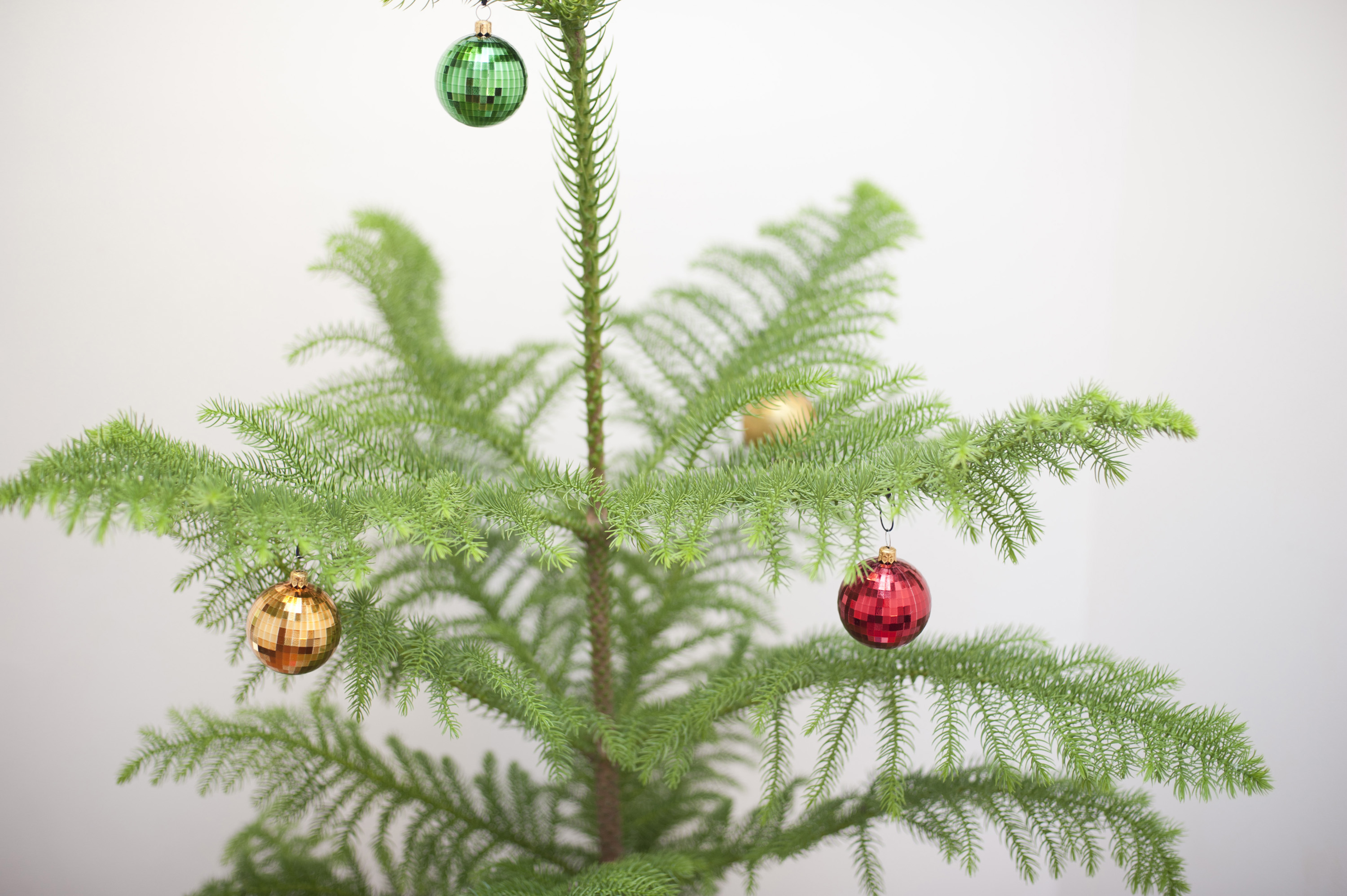 Commercial Christmas Decorations Uk
