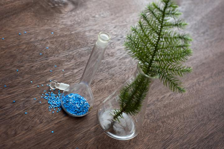Photo Of Christmas Tree Branch And Glitter Free