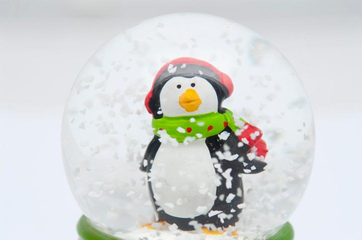 photo of little penguin in a spherical snow globe